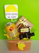 Gin Tonic WEB 1